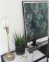 Graptoveria stående på glas kommode i sort billederamme med plante og guldlampe