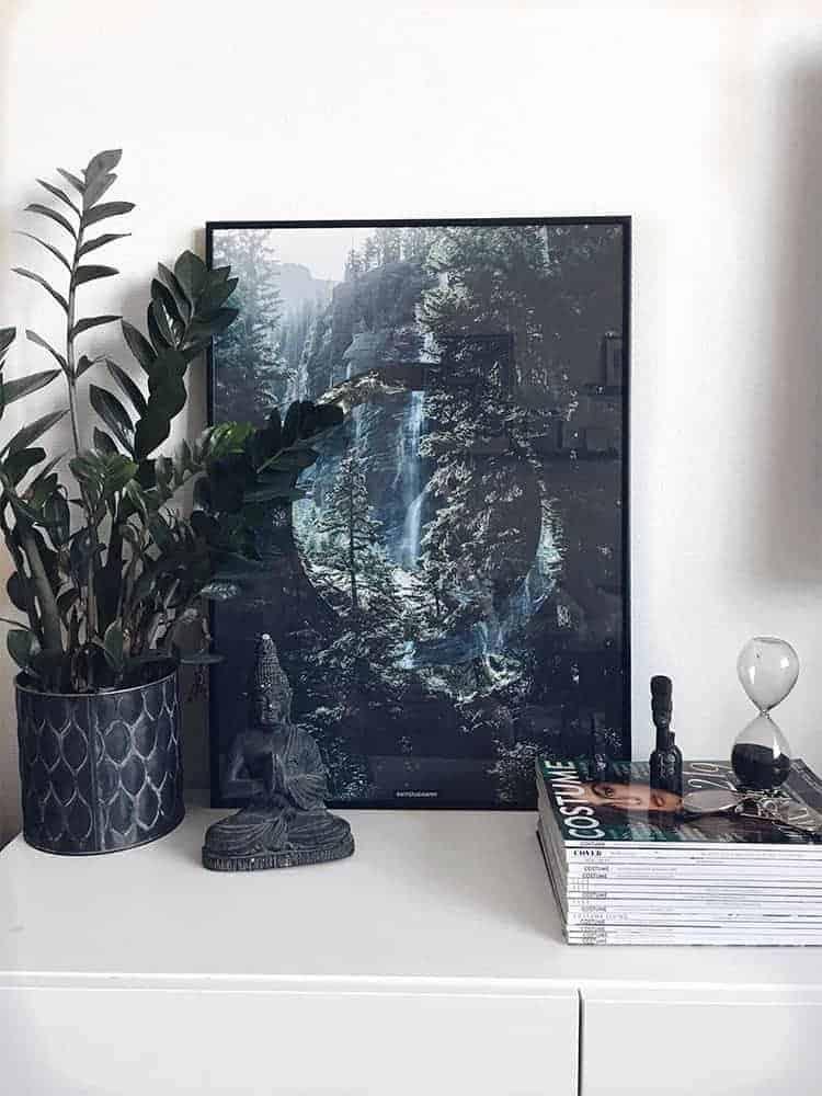 Natur fotokunst skov plakat
