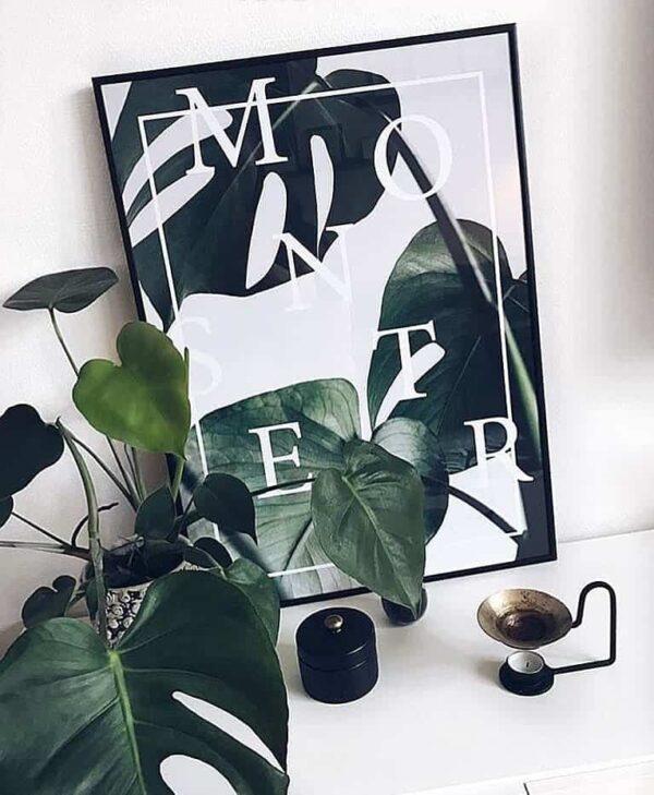 Monstera plakat - botanisk monstera deliciosa plante
