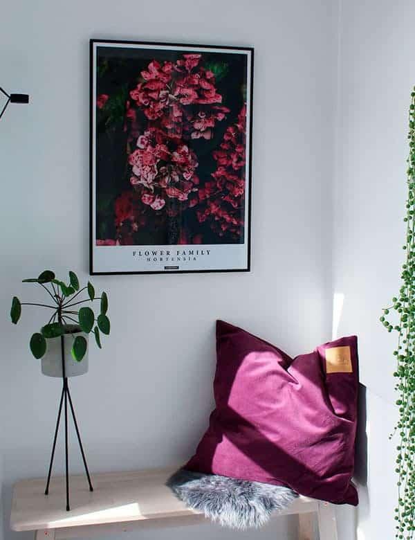 Blomster plakat - Hortensia plakat