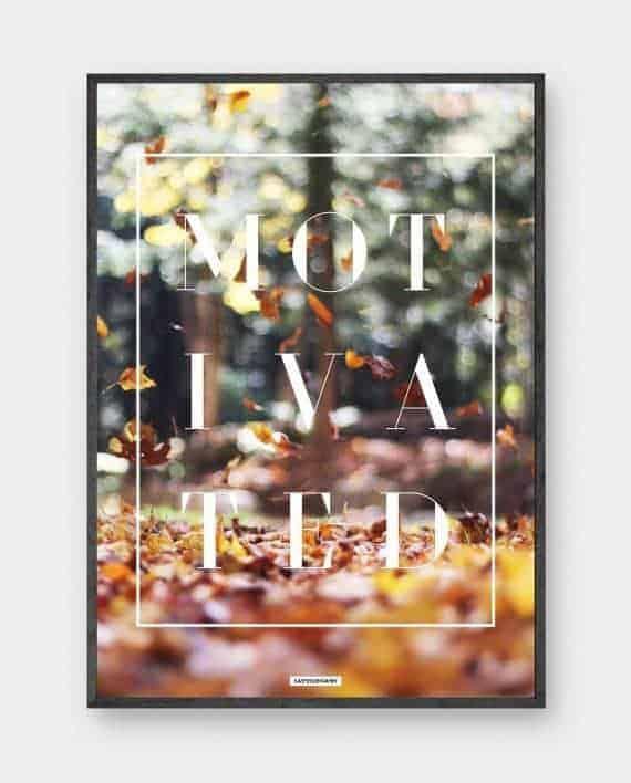 efteraar-blade-orange-tekst-motivated-570x708px