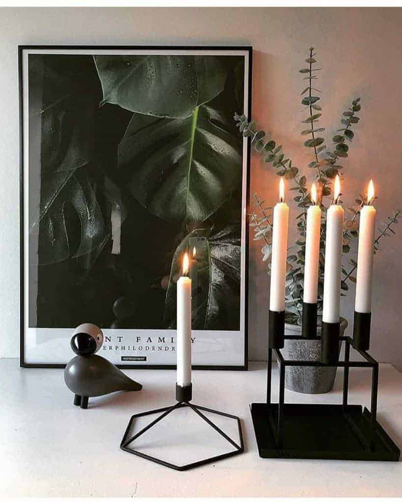 Fingerfilodendron plakat