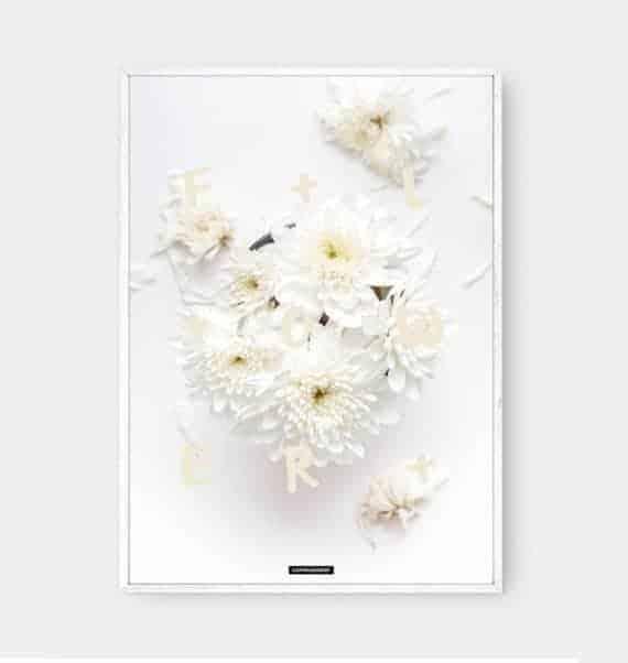 flower-blomster-natur-fotokunst-tekst-plakat