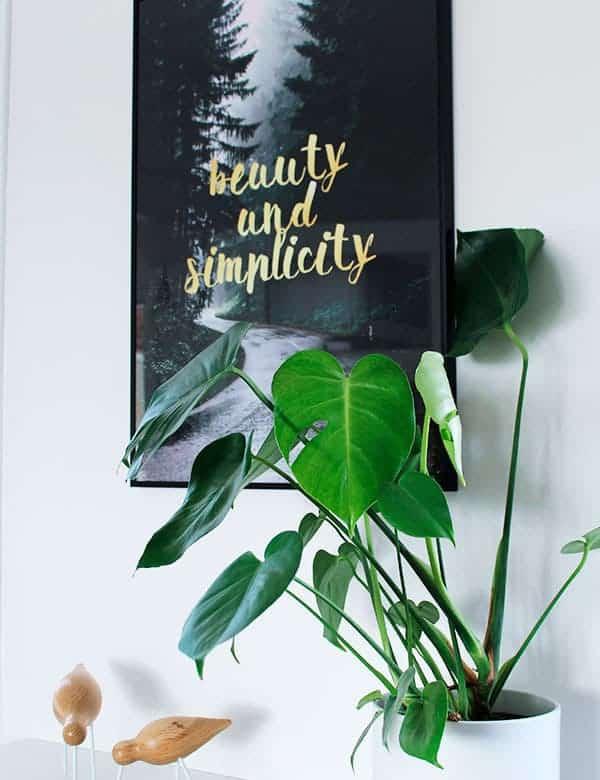 Grafisk natur plakat med guld tekst - Simplicity plakat
