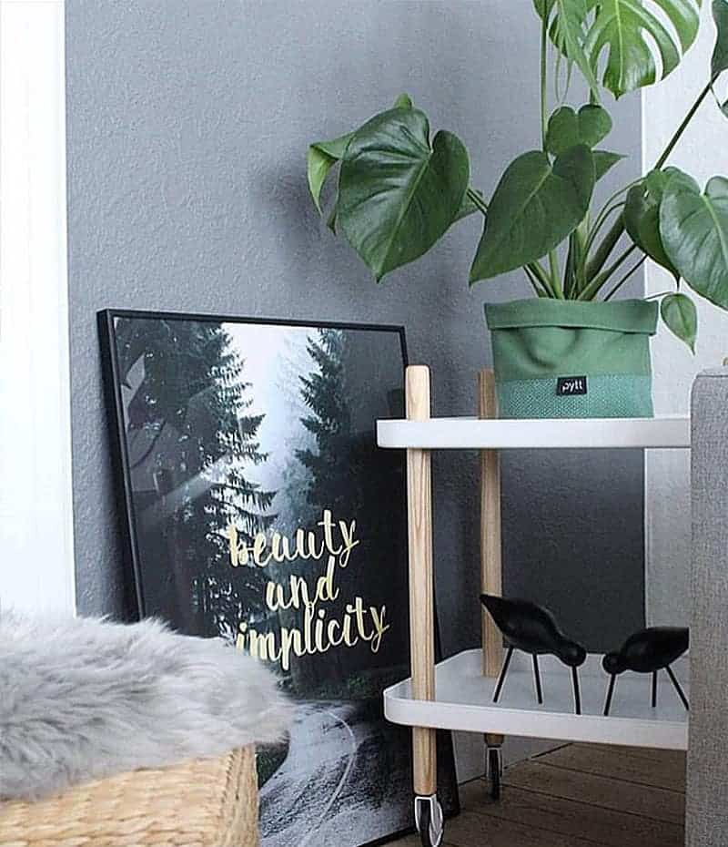 simplicity plakat - natur, tekst og guld
