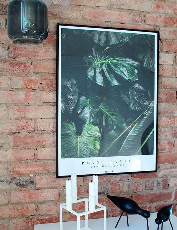 Grøn botanisk plante plakat på new yorker væg