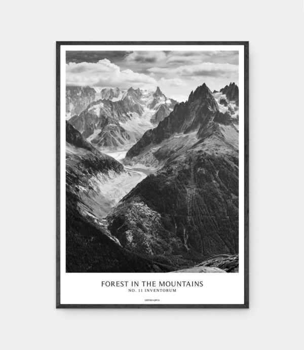 Forest in the mountains plakat