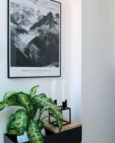 Forest In The Mountains plakat - sort hvid
