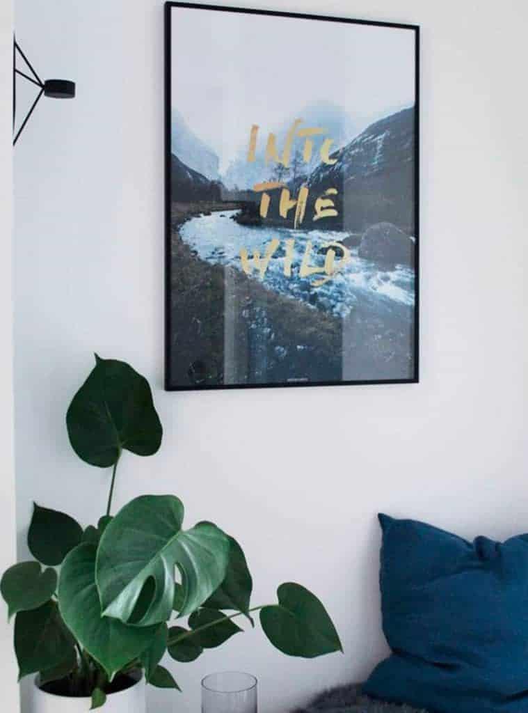 Fotokunst natur billede med guld tekst - Into The Wild plakat