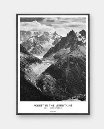 Forest in the mountains - Plakat