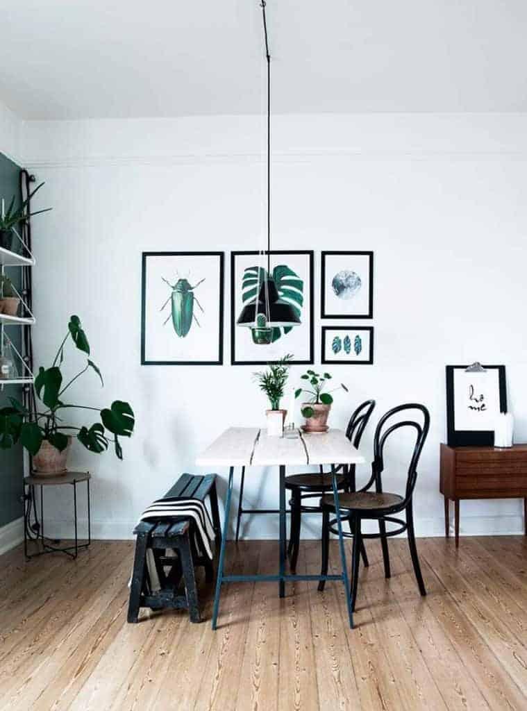 Ditteblog.dk - Inspiration til planter og indretning