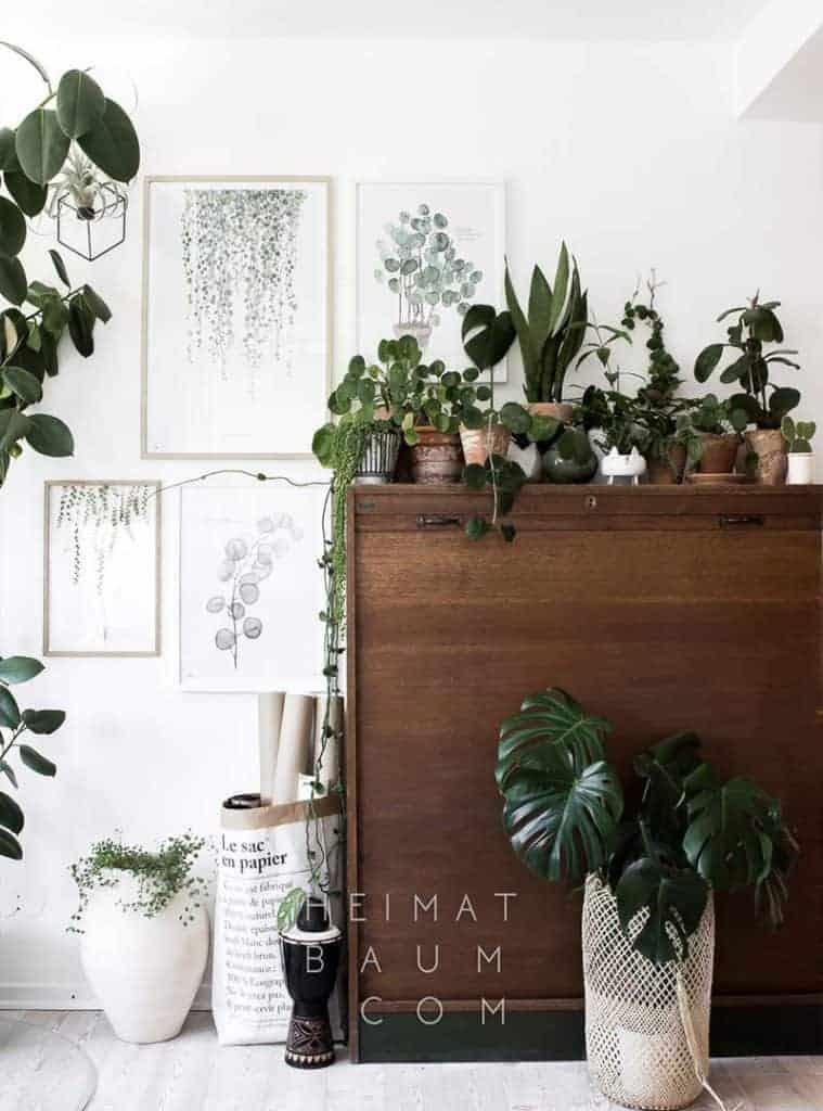 Heimat Baum - Inspiration til botanisk indretning