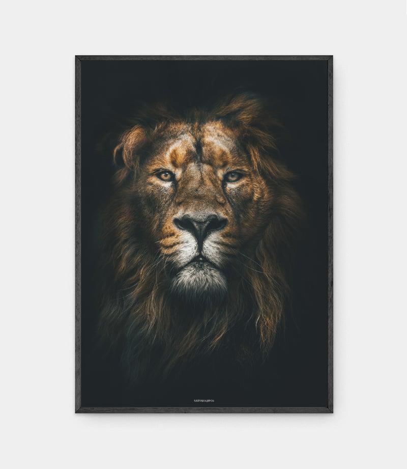 Lion King plakat i mørk ramme