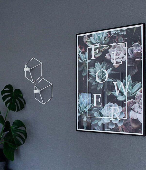 Flower plakat - botanik, planter og blomster