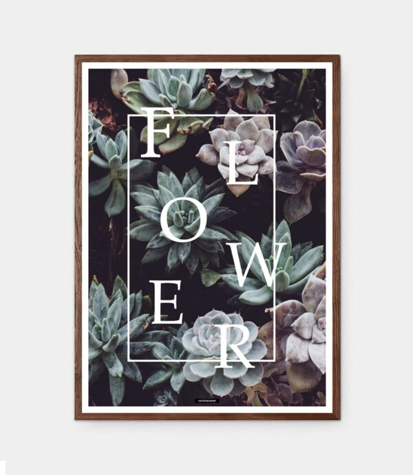 Flower plakat