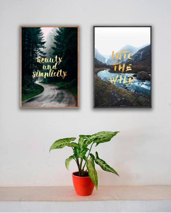 Plakatsæt - Simplicity og Into The Wild