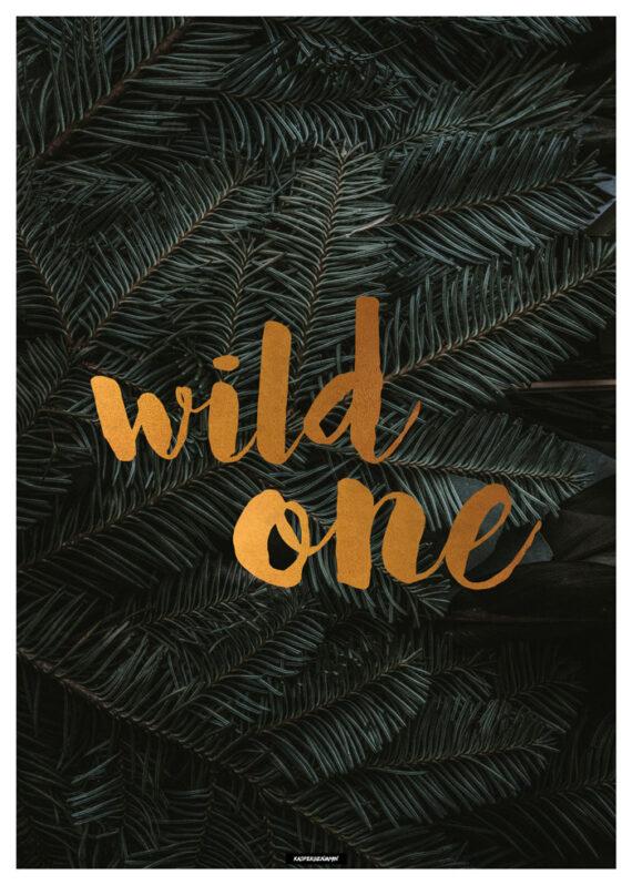 Wild One plakat