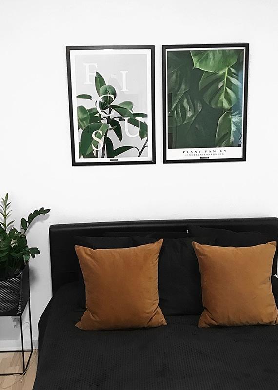 Plakatsæt - Ficus Elastica og Fingerphilodendron plakater