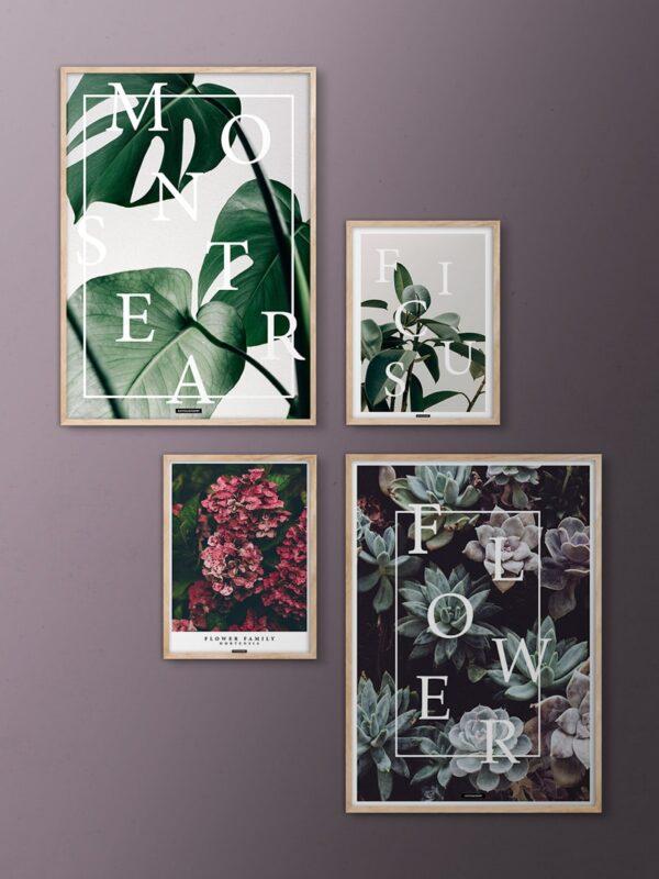 Blomster billedvæg med planter i egetrærammer