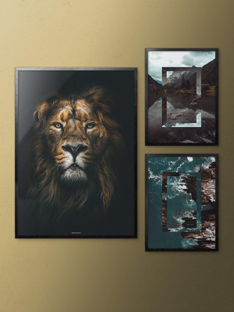 Billedvæg med løve og natur plakater på guldvæg i aluminiumrammer
