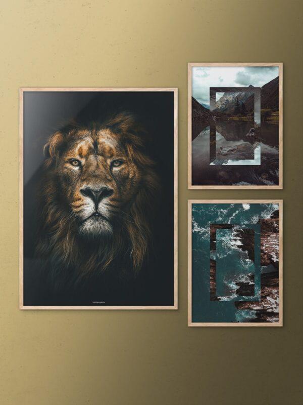 Billedvæg med løve og natur plakater på guldvæg i egetrærammer
